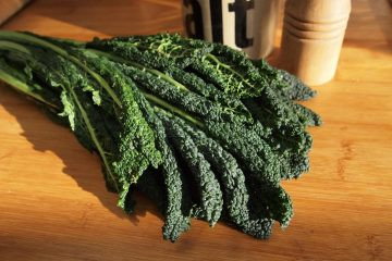 A picture of a large kale leaf
