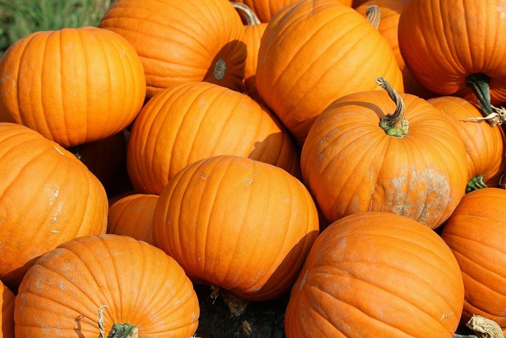 Whole pumpkins outside.