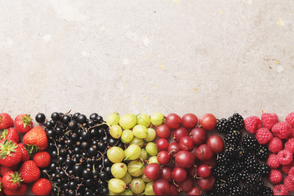 Variety of berries neatly organized on a counter top.