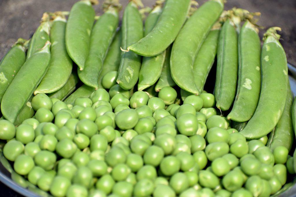 Peas in a bowl, some still in pod.