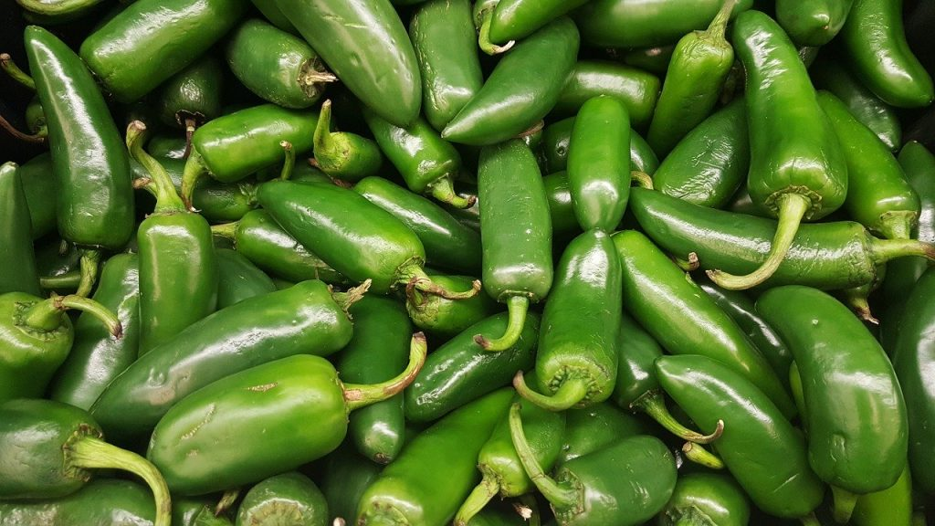 Pile of jalapeno peppers.