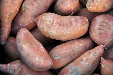 Pile of raw sweet potatoes.