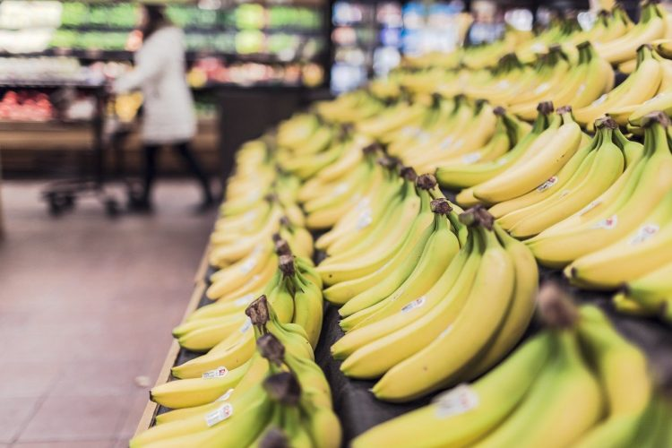 Row of bananas in grocery store.