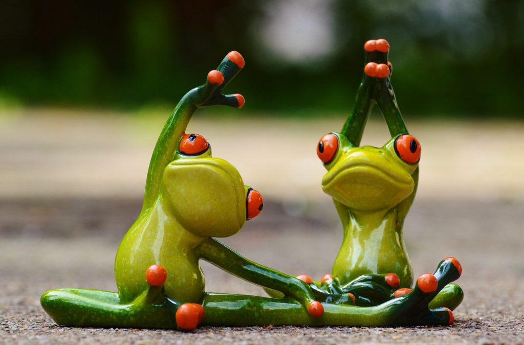 2 cute frogs stretching